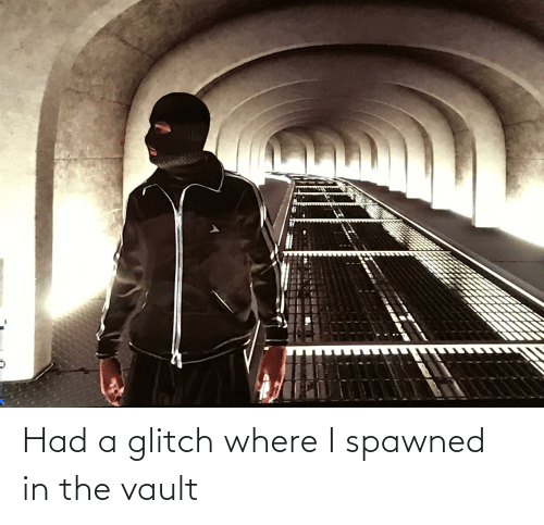 the vault: Had a glitch where I spawned in the vault