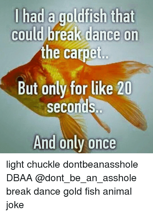 Goldfish Memes And Had That Could Break Dance On The Carpet