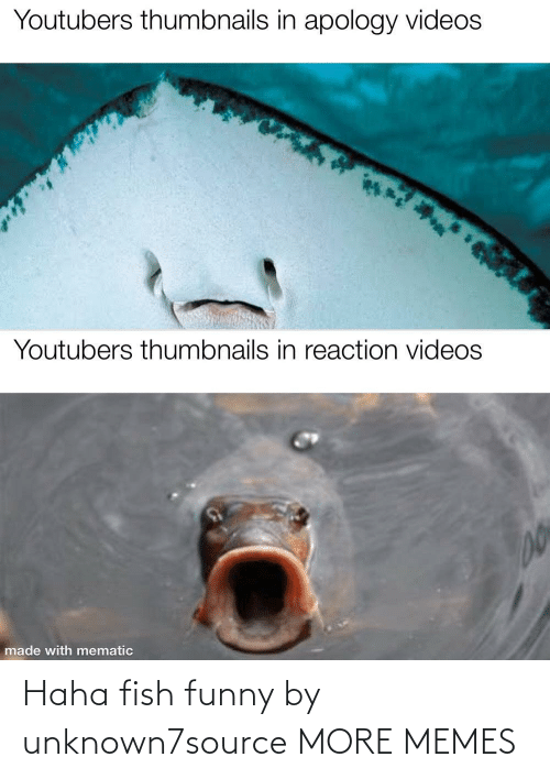 Fish: Haha fish funny by unknown7source MORE MEMES