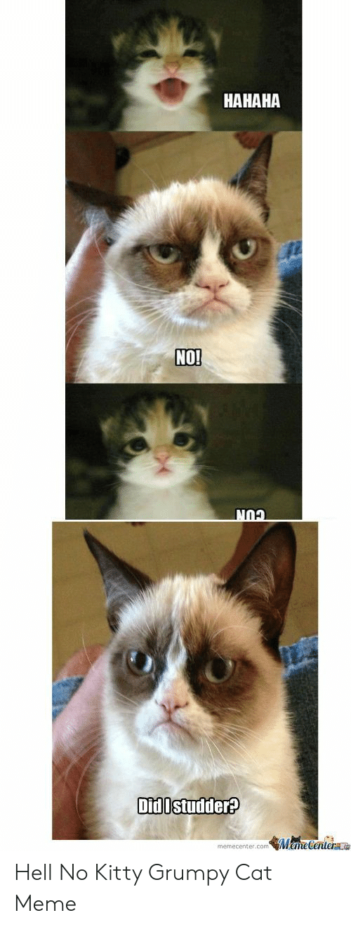9cbfeb66d Meme, Grumpy Cat, and Hell: HAHAHA NO Did Istudder? memecenter.comMemeCenter