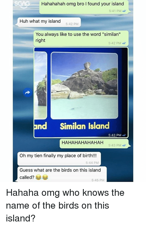 """tien: Hahahahah omg bro l found your island  5:41 PM  Huh what my island  5:42 PM  You always like to use the word """"similan''  right  5:42 PM  and Similan Island  5:43 PM  HAHAHAHAHAHA H  5:43 PM  Oh my tien finally my place of birth!!!  5:44 PM  Guess what are the birds on this island  called?  5:45 PM Hahaha omg who knows the name of the birds on this island?"""