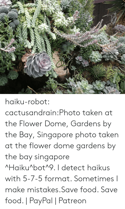 Singapore: haiku-robot:  cactusandrain:Photo taken at the Flower Dome, Gardens by the Bay, Singapore  photo taken at the flower dome gardens by the bay singapore ^Haiku^bot^9. I detect haikus with 5-7-5 format. Sometimes I make mistakes.Save food. Save food.   PayPal   Patreon