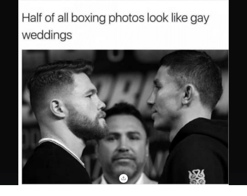 Boxing, Gay, and Photos: Half of all boxing photos look like gay  weddings  0.0