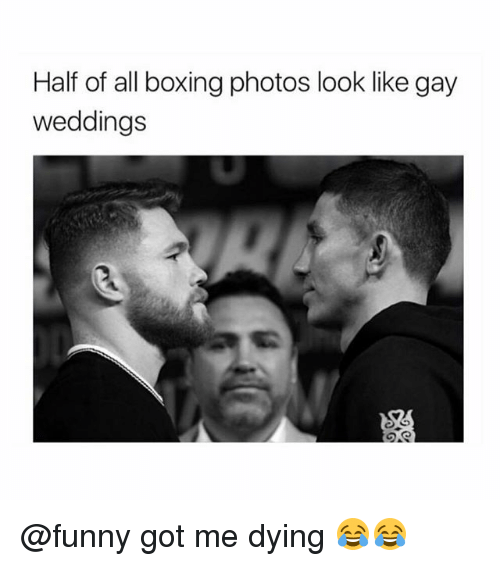Boxing, Funny, and Memes: Half of all boxing photos look like gay  weddings @funny got me dying 😂😂