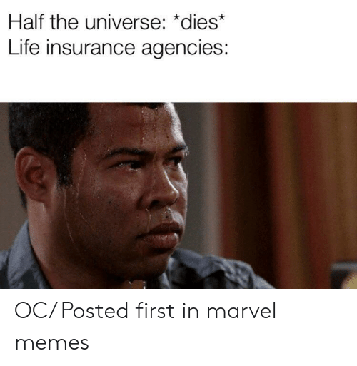 Life, Memes, and Life Insurance: Half the universe: *dies*  Life insurance agencies: OC/ Posted first in marvel memes