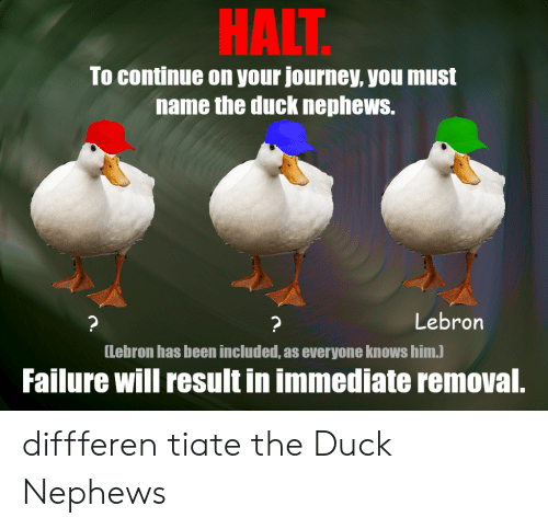 Journey, Duck, and Lebron: HALT  To continue on your journey, you must  name the duck nephews.  Lebron  ?  ?  [Lebron has been included, as everyone knows him.)  Failure will result in immediate removal. diffferen tiate the Duck Nephews