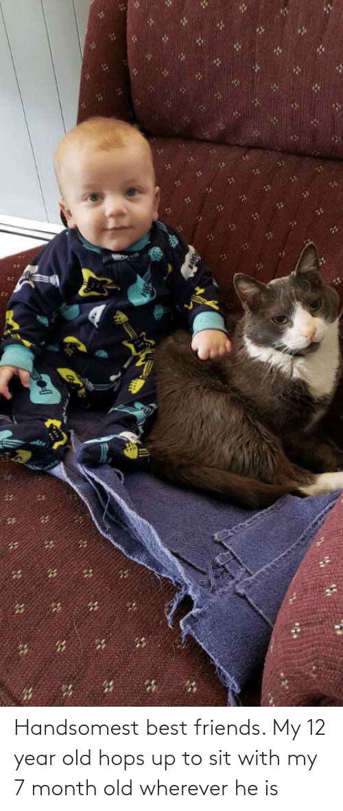 12 Year: Handsomest best friends. My 12 year old hops up to sit with my 7 month old wherever he is