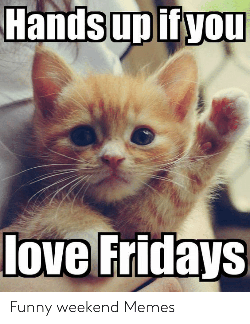 25 Best Memes About Happy Friyay Happy Friyay Memes Happy flannel season to you and yours ? happy friyay memes