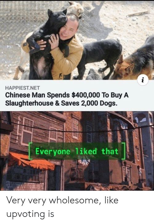 Dogs, Chinese, and Wholesome: HAPPIEST.NET  Chinese Man Spends $400,000 To Buy A  Slaughterhouse & Saves 2,000 Dogs.  Everyone liked that Very very wholesome, like upvoting is