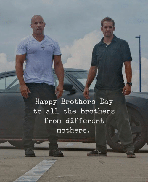 Happy, Mothers, and All The: Happy Brothers Day  to all the brothers  from different  mothers.