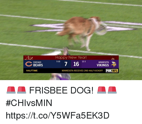 Chicago Bears: Happy New Year!  12-3  7 16 VIKINGS  MINNESOTA RECEIVES 2ND HALF KICKOFF FOXNFL  MINNESOTA  CHICAGO  BEARS  HALFTIME 🚨🚨 FRISBEE DOG! 🚨🚨  #CHIvsMIN https://t.co/Y5WFa5EK3D
