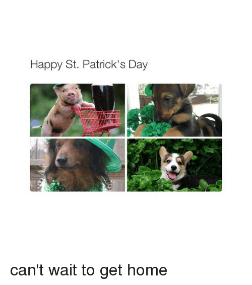 St Patrick Day: Happy St. Patrick's Day can't wait to get home