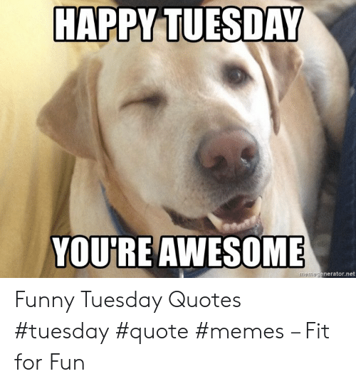 HAPPY TUESDAY YOURE AWESOME Memegeneratornet Funny Tuesday ...