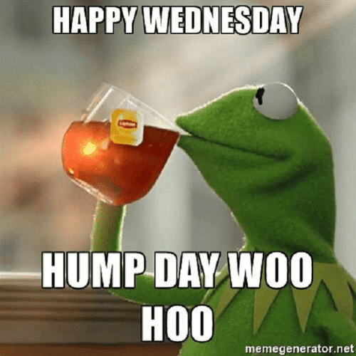Hump Day, Memes, and Happy: HAPPY WEDNESDAY  HUMP DAY WOO  HOO  memegenerator.net