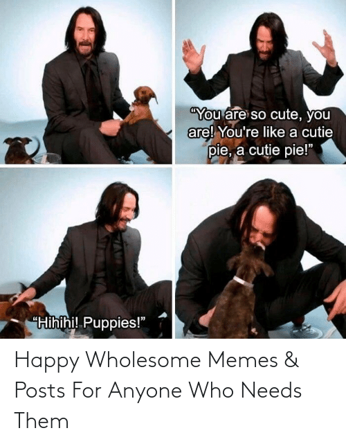 Posts: Happy Wholesome Memes & Posts For Anyone Who Needs Them