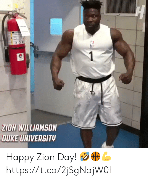 ballmemes.com: Happy Zion Day! 🤣🏀💪 https://t.co/2jSgNajW0I