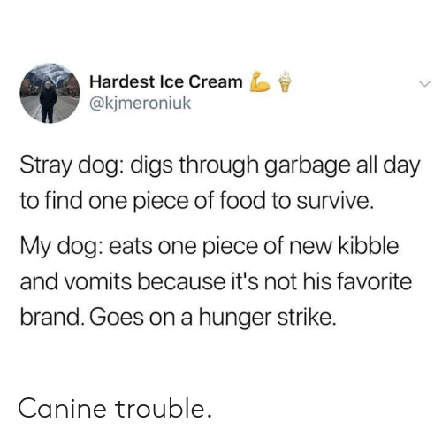 Food, Ice Cream, and One Piece: Hardest Ice Cream  @kjmeroniuk  Stray dog: digs through garbage all day  to find one piece of food to survive.  My dog: eats one piece of new kibble  and vomits because it's not his favorite  brand. Goes on a hunger strike. Canine trouble.