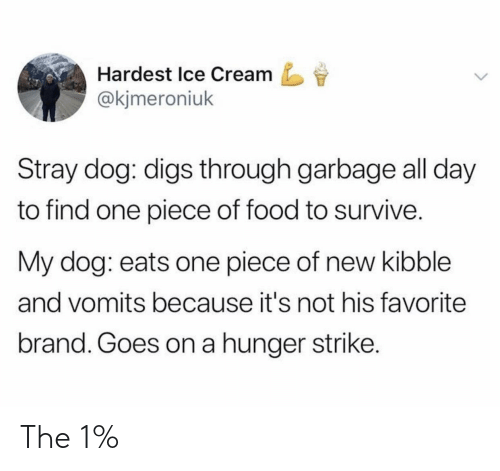 One Piece: Hardest Ice Cream  @kjmeroniuk  Stray dog: digs through garbage all day  to find one piece of food to survive.  My dog: eats one piece of new kibble  and vomits because it's not his favorite  brand. Goes on a hunger strike. The 1%