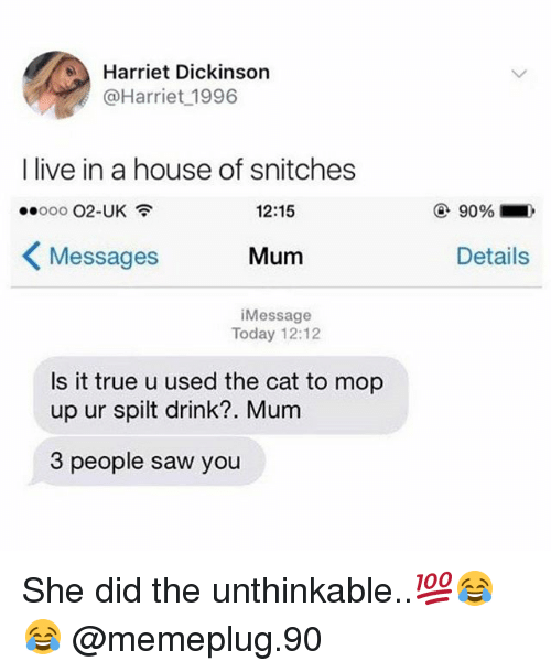 Sawing: Harriet Dickinson  @Harriet 1996  I live in a house of snitches  12:15  90%.  くMessages  Mum  Details  iMessage  Today 12:12  Is it true u used the cat to mop  up ur spilt drink?. Mum  3 people saw you She did the unthinkable..💯😂😂 @memeplug.90