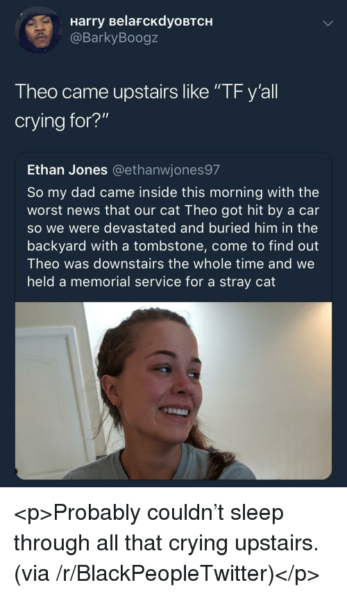 "Blackpeopletwitter, Crying, and Dad: Harry BelafcKdyoBTCH  @BarkyBoogz  Theo came upstairs like ""TF y'all  crying for?""  Ethan Jones @ethanwjones97  So my dad came inside this morning with the  worst news that our cat Theo got hit by a car  so we were devastated and buried him in the  backyard with a tombstone, come to find out  Theo was downstairs the whole time and we  held a memorial service for a stray cat <p>Probably couldn't sleep through all that crying upstairs. (via /r/BlackPeopleTwitter)</p>"