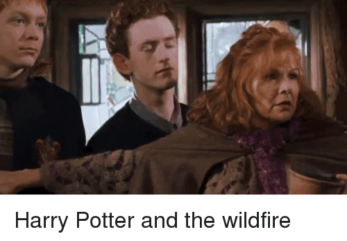 Family, Harry Potter, and Mrw: Harry Potter and the wildfire