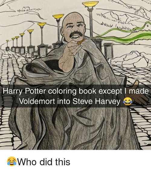 Harry Potter, Memes, and Steve Harvey: Harry Potter coloring book except I made  Voldemort into Steve Harvey 😂Who did this