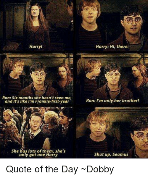 Franky: Harry!  Ron: Six months she hasn't seen me,  and it's like I'm Frankie-first-year  She has lots of them, she's  only got one Harry  Harry: Hi, there.  Ron: I'm only her brother!  Shut up, Seamus Quote of the Day ~Dobby