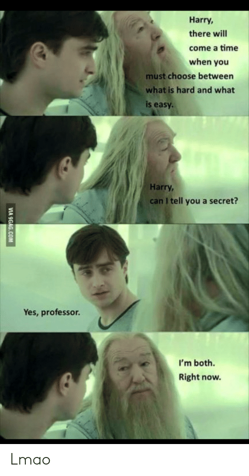 And What: Harry,  there will  come a time  when you  must choose between  what is hard and what  is easy  Harry,  can I tell you a secret?  Yes, professor.  I'm both.  Right now.  VIA 9GAG.COM Lmao