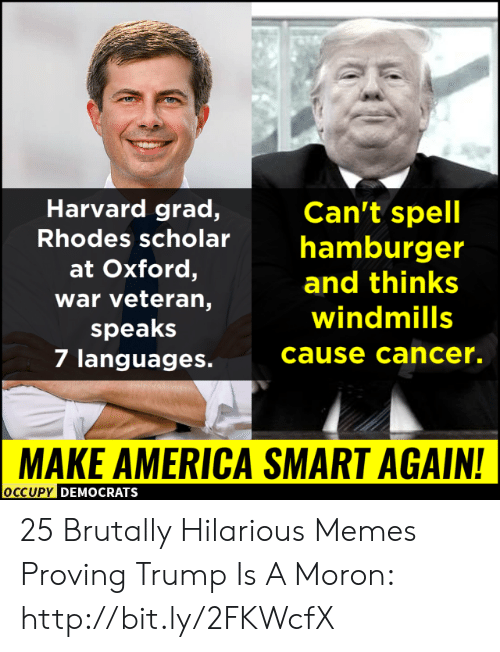 America, Memes, and Cancer: Harvard grad,  Can't spell  Rhodes scholarhamburger  at Oxford,  war veteran,  speaks  7 languages.  and thinks  windmills  cause cancer.  MAKE AMERICA SMART AGAIN!  OCCUPy DEMOCRATS 25 Brutally Hilarious Memes Proving Trump Is A Moron: http://bit.ly/2FKWcfX