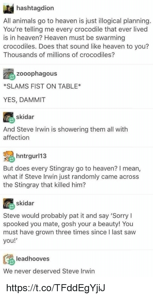 Animals, Heaven, and Memes: hashtagdion  All animals go to heaven is just illogical planning  You're telling me every crocodile that ever lived  is in heaven? Heaven must be swarming  crocodiles. Does that sound like heaven to you?  Thousands of millions of crocodiles?  Zooophagous  *SLAMS FIST ON TABLE*  YES, DAMMIT  skidar  And Steve Irwin is showering them all with  affection  hntrgur/13  But does every Stingray go to heaven? I mean,  what if Steve Irwin just randomly came across  the Stingray that killed him?  skidar  Steve would probably pat it and say 'Sorry I  spooked you mate, gosh your a beauty! You  must have grown three times since I last saw  you!  leadhooves  We never deserved Steve Irwin https://t.co/TFddEgYjiJ