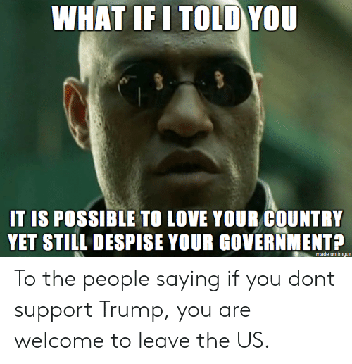Love, Imgur, and Trump: HAT IF I TOLD YOU  IT IS POSSIBLE TO LOVE YOUR COUNTRY  YET STILL DESPISE YOUR GOVERNMENTP  made on imgur To the people saying if you dont support Trump, you are welcome to leave the US.