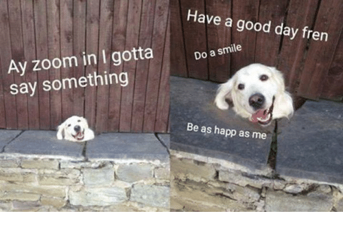 zoom ins: Have a good day fren  Ay zoom in I gotta  Do a smile  say something  Be as happ as me
