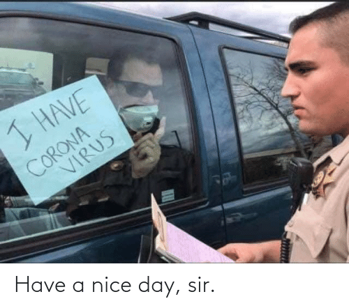 have a nice day: Have a nice day, sir.