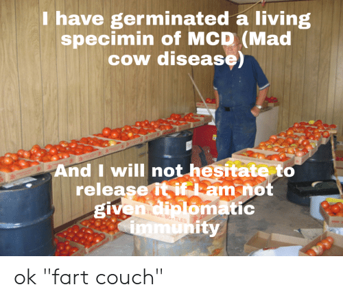 """Couch, Mad, and Living: have germinated a living  specimin of MCD (Mad  cow disease  And Iwill not hesitate to  release it i am not  ómatiC  given dia om  ity  mu ok """"fart couch"""""""