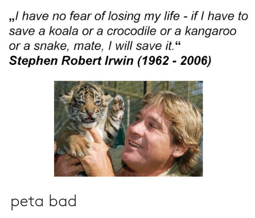 "Bad, Life, and Stephen: ,,/ have no fear of losing my life - if I have to  save a koala or a crocodile or a kangaroo  or a snake, mate, I will save it.""  Stephen Robert Irwin (1962 - 2006)  35 peta bad"