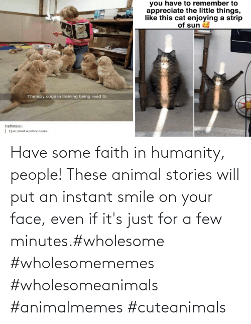 people: Have some faith in humanity, people! These animal stories will put an instant smile on your face, even if it's just for a few minutes.#wholesome #wholesomememes #wholesomeanimals #animalmemes #cuteanimals