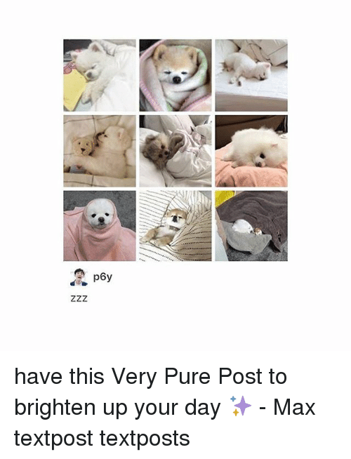 Pured: have this Very Pure Post to brighten up your day ✨ - Max textpost textposts