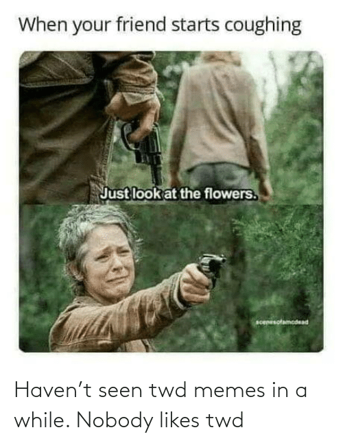 nobody: Haven't seen twd memes in a while. Nobody likes twd