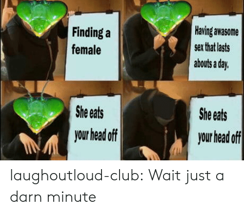 Finding: Having awasome  Finding a  sex that lasts  female  abouts a day.  She eats  She eats  your head off  your head off laughoutloud-club:  Wait just a darn minute