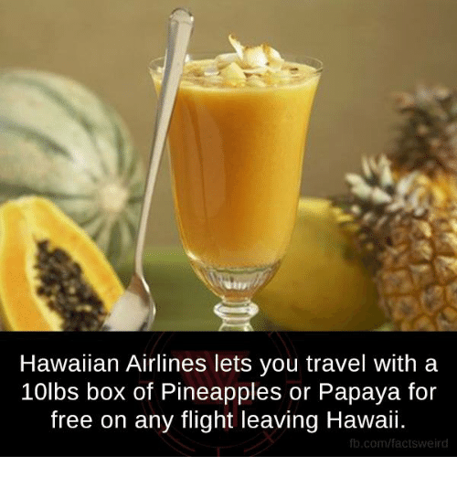 Pineappl: Hawaiian Airlines lets you travel with a  10lbs box of Pineapples or Papaya for  free on any flight leaving Hawaii.  fb.com/facts Weird