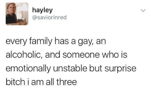 Bitch, Family, and Alcoholic: hayley  @saviorinred  every family has a gay, an  alcoholic, and someone who is  emotionally unstable but surprise  bitch i am all three