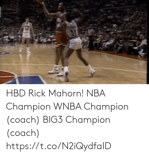 Memes, Nba, and WNBA (Womens National Basketball Association): HBD Rick Mahorn!  NBA Champion  WNBA Champion (coach) BIG3 Champion (coach)    https://t.co/N2iQydfaID