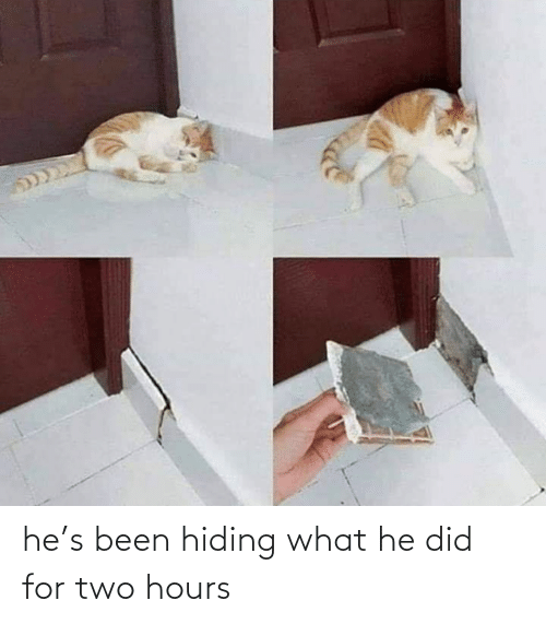 hiding: he's been hiding what he did for two hours