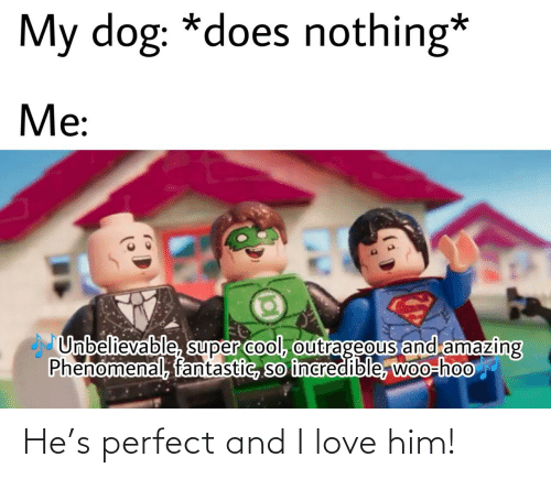 perfect: He's perfect and I love him!