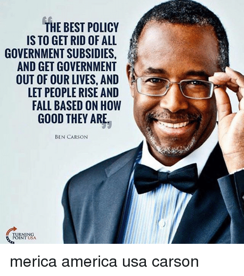 America, Ben Carson, and Fall: HE BEST POLICY  IS TO GET RID OF ALL  GOVERNMENT SUBSIDIES  AND GET GOVERNMENT  OUT OF OUR LIVES, AND  LET PEOPLE RISE AND  FALL BASED ON HOW  GOOD THEY ARE  BEN CARSON merica america usa carson