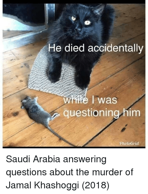 Saudi Arabia: He died accidentally  W #6 I was  questioning him Saudi Arabia answering questions about the murder of Jamal Khashoggi (2018)