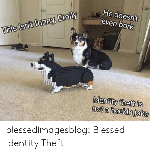Blessed, Funny, and Tumblr: He doesn't  even bork  This isn't funny, Emily  Identity theft is  not a heckin joke blessedimagesblog:  Blessed Identity Theft
