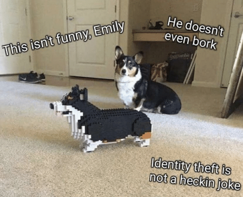 Heckin: He doesn't  even bork  This isn't funny, Emily  Identity theft is  not a heckin joke