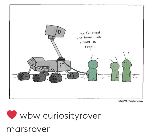 Lizclimo Tumblr: he followed  me home. his  name iS  rover  lizclimo. tumblr.com ❤️ wbw curiosityrover marsrover