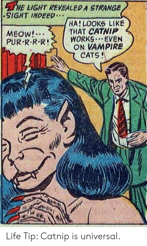 catnip: HE LIGHT REVEALED A STRANGE  SIGNT INDEED  HA LOOKS LIKE  THAT CATNIP  WORKS EVEN  ON VAMPIRE  CATS!  MEOW!  PUR R-R-R! Life Tip: Catnip is universal.
